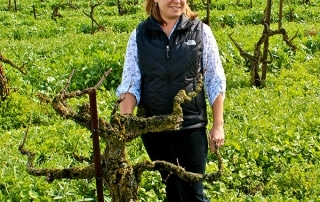 phoenix ranch's jillian johnson on wine flavors